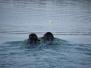 Eerste zwempje na de winter